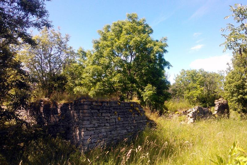 Suur-Pakri varemed